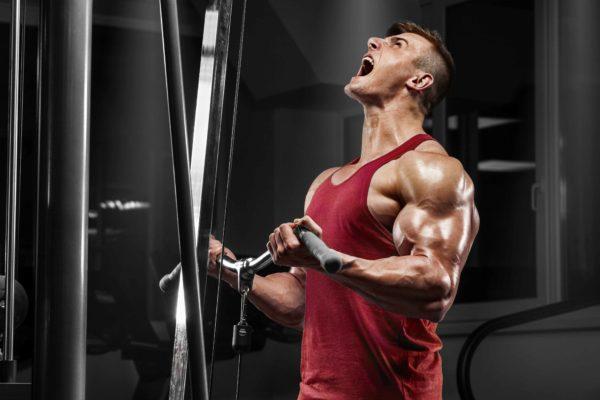 Claves para aumentar tu masa muscular